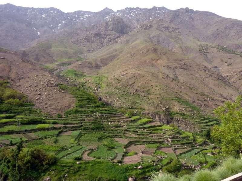 Amaing-toubkal-trek-Lamhamid