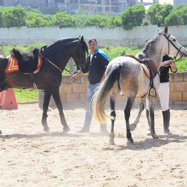 Royal-club-equestre-anfa
