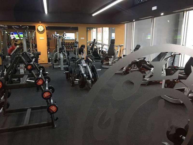 stay profita golds gym - 800×600